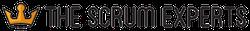 TheScrumExperts.com Logo